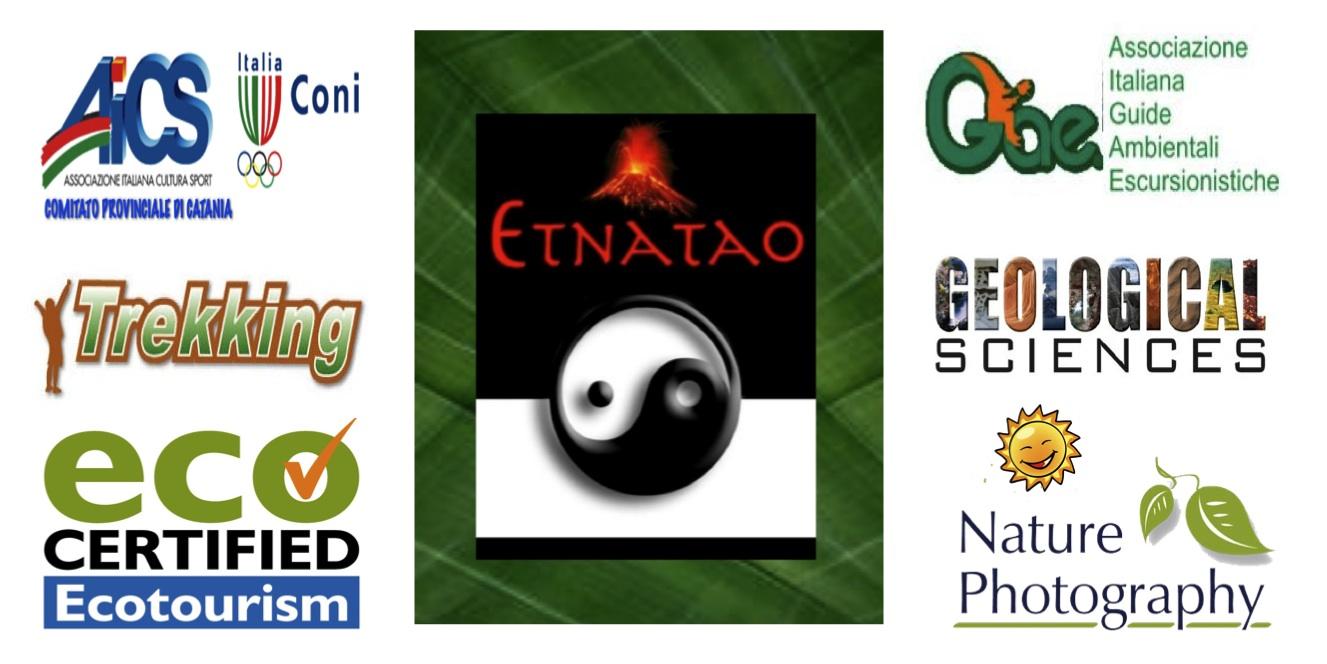 NEW ETNATAO WEBSITE